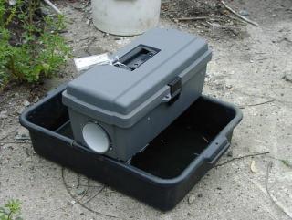 Gravid Mosquito trap