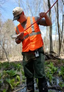 Larval Field Surveillance
